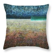 Paystract Throw Pillow