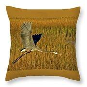 Pb296601 Great Blue Heron Throw Pillow