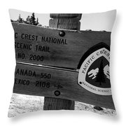 Pct Scenic Trail Throw Pillow