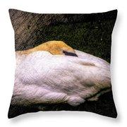 Peace At Nightfall Throw Pillow