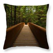 Peace Bridge Throw Pillow
