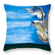 Peace Gull Throw Pillow