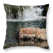Peace In The Park Throw Pillow