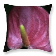 Peace-lilly-pink Throw Pillow