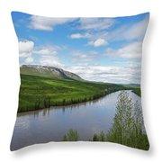 Peace River Throw Pillow
