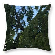 Peaceful And Relaxed  Throw Pillow