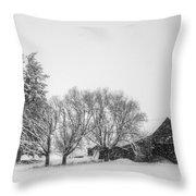 Peaceful Barn Throw Pillow