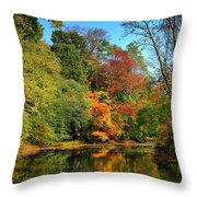 Peaceful Calm - Allaire State Park Throw Pillow