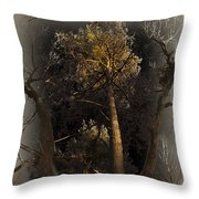 Peaceful Coexistence Throw Pillow