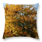 Peaceful Country Road Throw Pillow