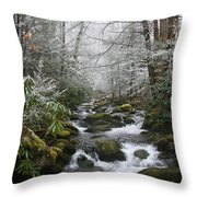 Peaceful Flow Throw Pillow