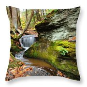 Peaceful Flow Throw Pillow