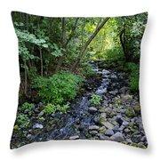 Peaceful Flowing Creek Throw Pillow