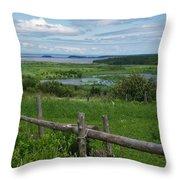 Peaceful Intrigue Throw Pillow