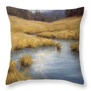 Peaceful Meanders Throw Pillow