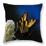 Peaceful Moment Throw Pillow