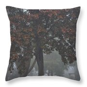 Peaceful Morning Mist Throw Pillow