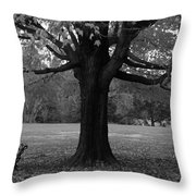 Peaceful Park Throw Pillow