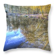 Peaceful Pond Reflections  Throw Pillow