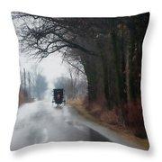 Peaceful Road Throw Pillow