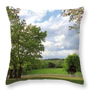 Peaceful Setting Throw Pillow