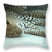 Peaceful Sleep Throw Pillow