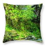 Peaceful Small Creek Under Kinsol Trestle, Vancouver Island, Bc, Canada 1. Throw Pillow