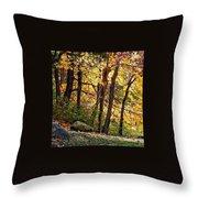 Peaceful Trees Throw Pillow