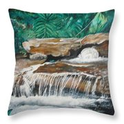 Peaceful Waters Flow Throw Pillow