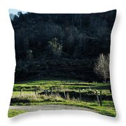 Peaceful West Virginia Valley Throw Pillow