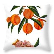 Peach And Peach Blossoms Throw Pillow