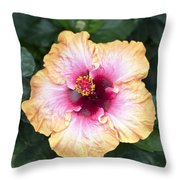 Peach And Pink Throw Pillow