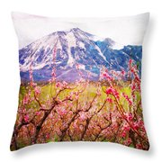 Peach Blossoms And Mount Lamborn II Throw Pillow