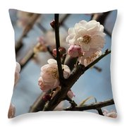 Peach Blossoms In Spring Throw Pillow