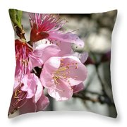 Peach Blossoms Throw Pillow