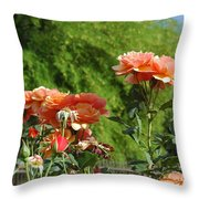 Peach Colored Beauties Throw Pillow