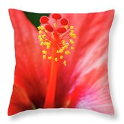 Peach Colored Hibiscus Closeup Throw Pillow
