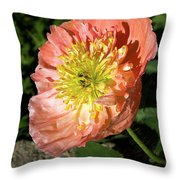 Peach Colored Poppy Throw Pillow