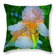 Peach Curtsey Throw Pillow