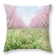 Peach Orchard 4 Throw Pillow