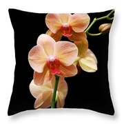 Peach Orchids Throw Pillow