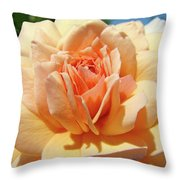 Peach Rose Art Prints Roses Flowers Giclee Prints Baslee Troutman Throw Pillow