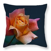 Peach Rose Bud Throw Pillow
