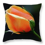 Peach Splendour Throw Pillow