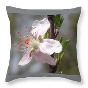 Peach Tree 2 Throw Pillow