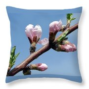 Peach Tree Throw Pillow