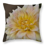Peaches And Cream Dahlia Throw Pillow