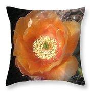 Peachy Opuntia Flower Throw Pillow