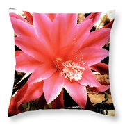 Peachy Pink Cactus Orchid Throw Pillow