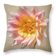 Peachy Pink Dahlia Close-up Throw Pillow